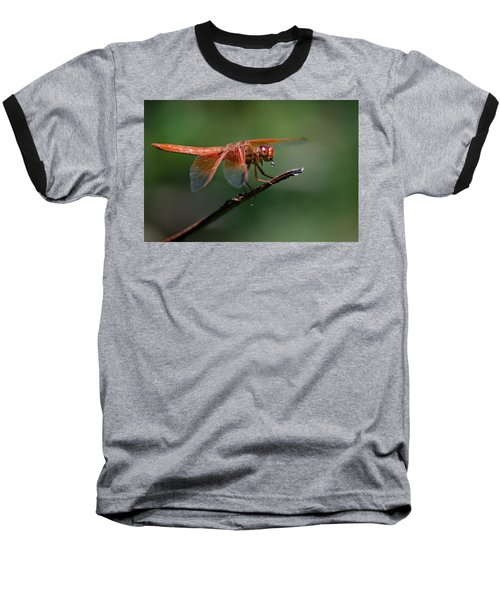 Flame Skimmer Dragonfly Baseball T-Shirt
