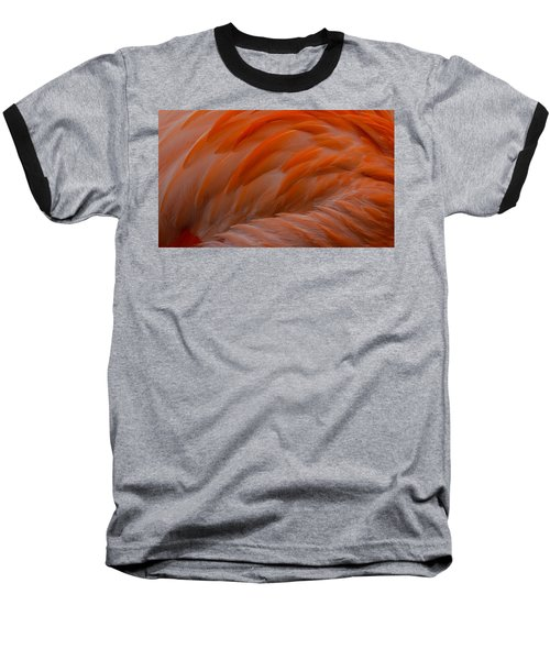 Flamingo Feathers Baseball T-Shirt by Michael Hubley
