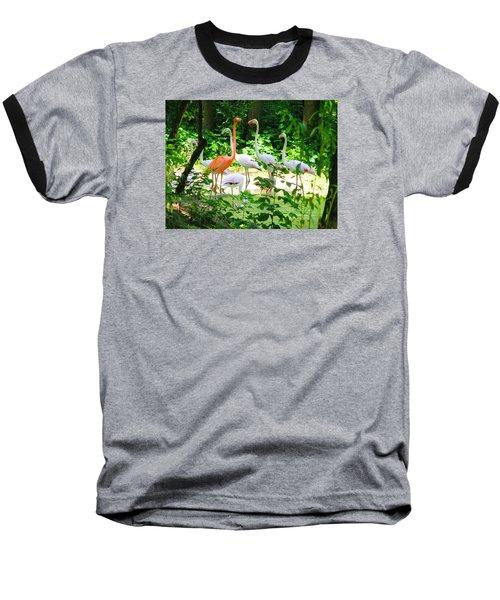 Flamingo Baseball T-Shirt by Oleg Zavarzin