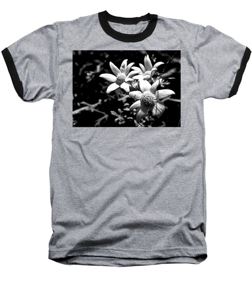 Flannel Flower Baseball T-Shirt by Miroslava Jurcik