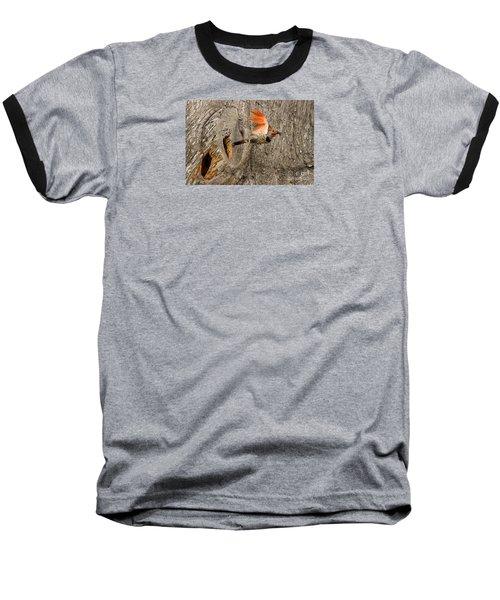Flicker Flight Baseball T-Shirt by Alice Cahill