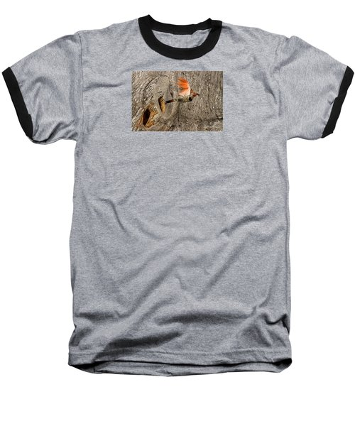 Flicker Flight Baseball T-Shirt