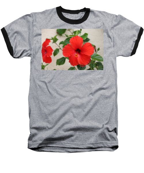 Floral Beauty  Baseball T-Shirt