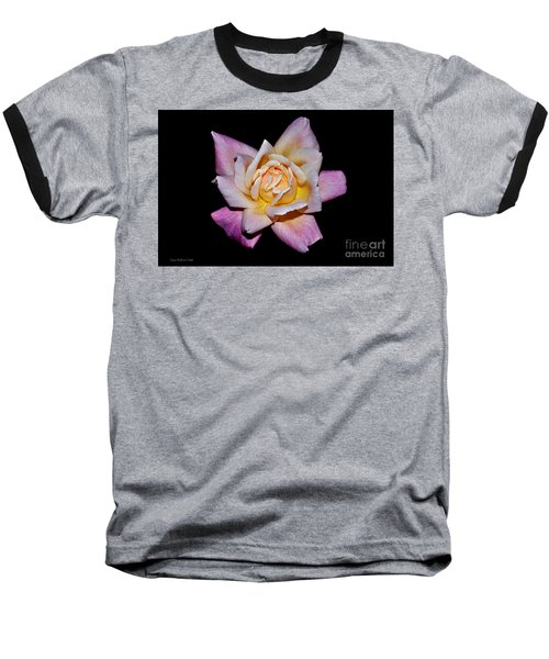 Baseball T-Shirt featuring the photograph Floribunda Rose In Full Bloom by Susan Wiedmann