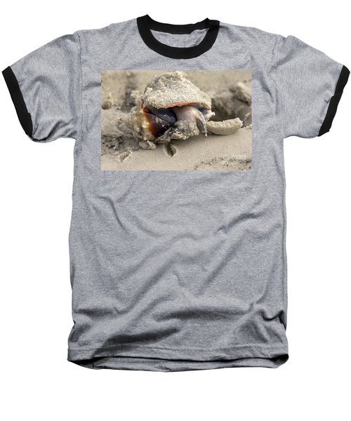 Baseball T-Shirt featuring the photograph Florida Fighting Conch by Meg Rousher