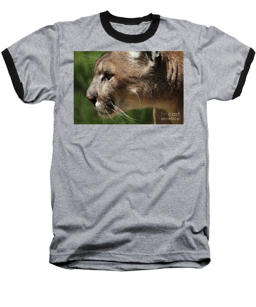 Baseball T-Shirt featuring the photograph Florida Panther Profile by Meg Rousher