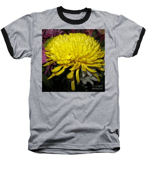 Yellow Queen. Beautiful Flowers Collection For Home Baseball T-Shirt