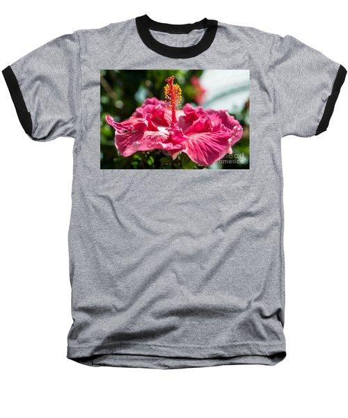 Flower Closeup Baseball T-Shirt