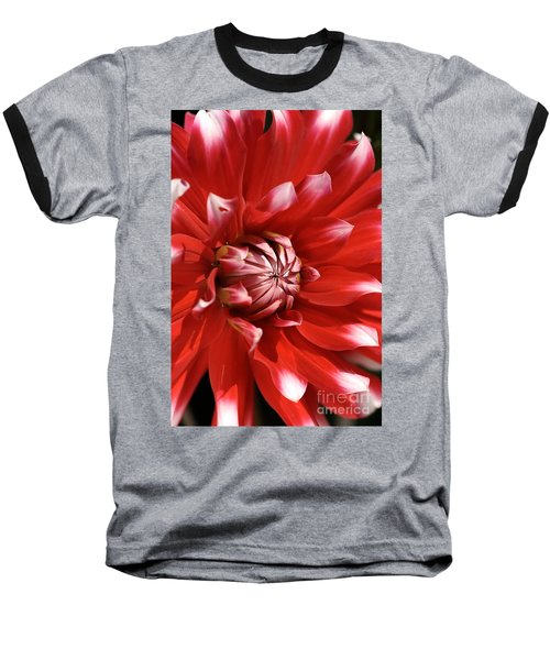 Flower- Dahlia-red-white Baseball T-Shirt