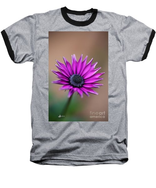 Flower-daisy-purple Baseball T-Shirt