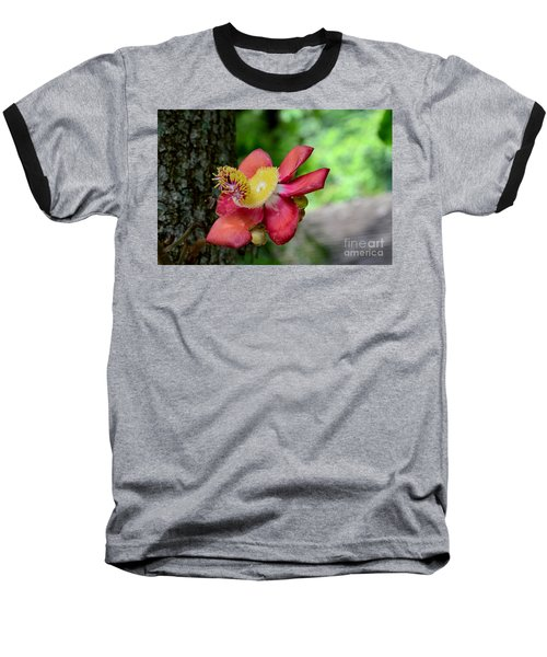 Flower Of Cannonball Tree Singapore Baseball T-Shirt