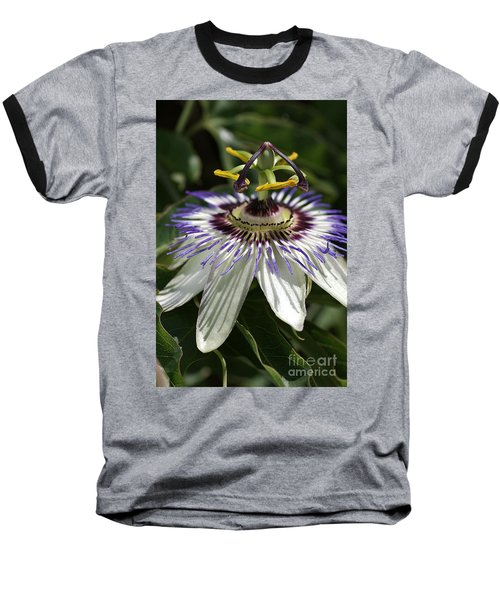 flower-Passionfruit Baseball T-Shirt