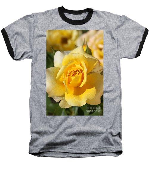 Flower-yellow Rose-delight Baseball T-Shirt by Joy Watson