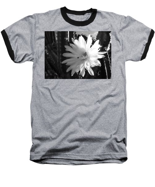 Flowering Cactus 1 Bw Baseball T-Shirt