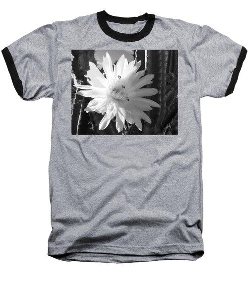 Flowering Cactus 5 Bw Baseball T-Shirt