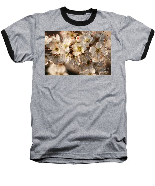 Flowers In The Sunset Baseball T-Shirt