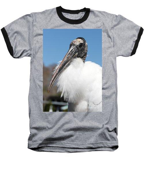 Fluffy Wood Stork Baseball T-Shirt by Carol Groenen