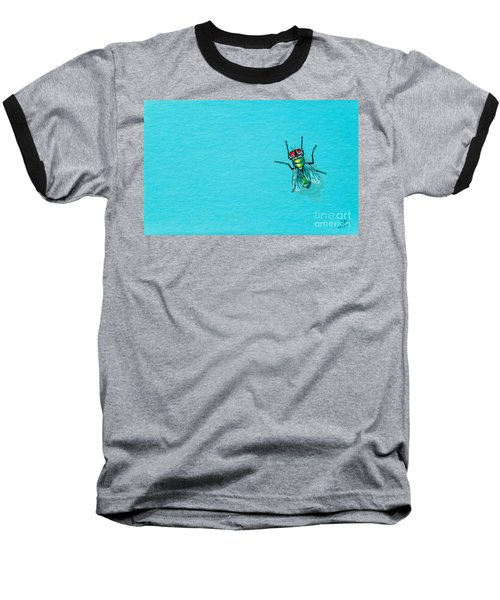 Fly On The Wall Baseball T-Shirt by Stefanie Forck