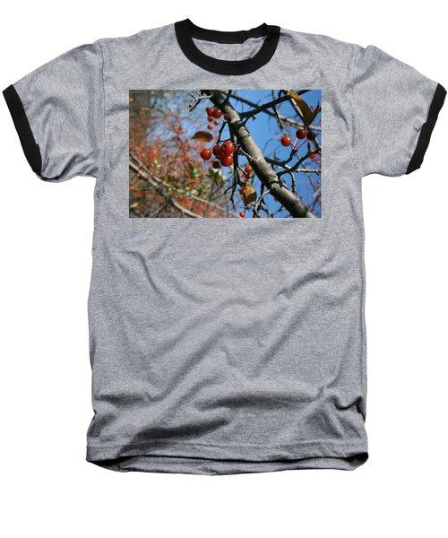 Focused Baseball T-Shirt by Neal Eslinger