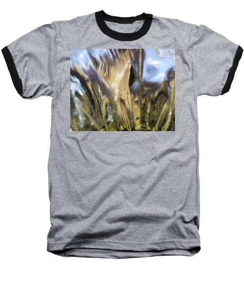 Baseball T-Shirt featuring the photograph Forbidden Forest by Martin Howard