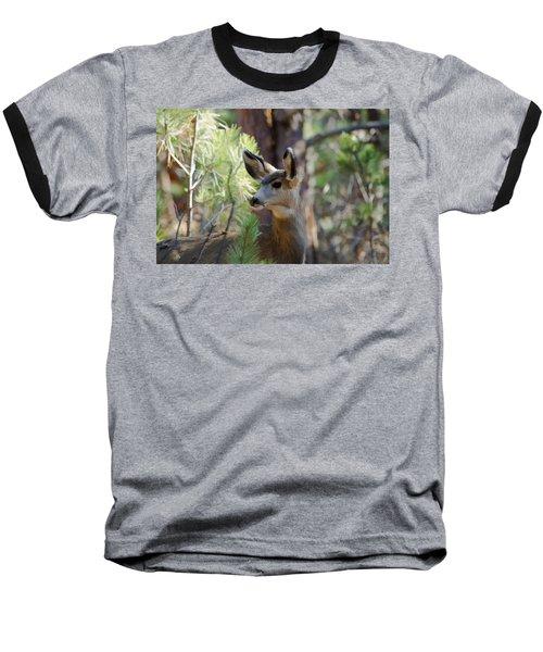Forest Doe Baseball T-Shirt