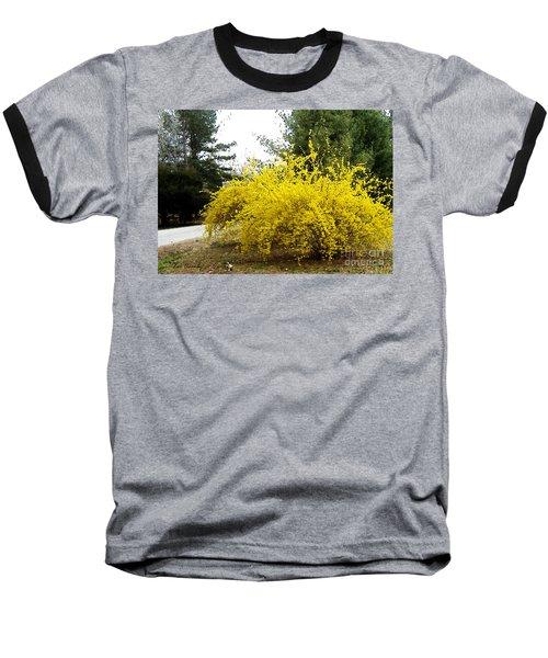 Forsythia Baseball T-Shirt