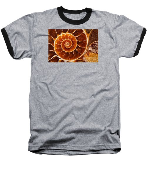 Fossil Nautilus Baseball T-Shirt by Alice Cahill