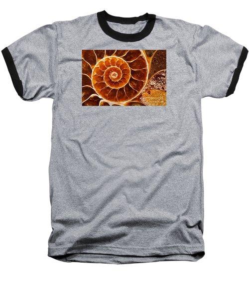 Fossil Nautilus Baseball T-Shirt