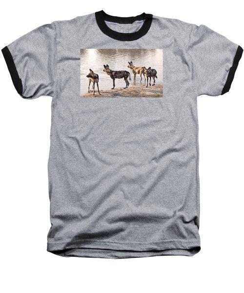 Four Alert African Wild Dogs Baseball T-Shirt