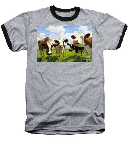 Four Chatting Cows Baseball T-Shirt