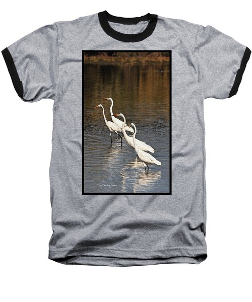 Baseball T-Shirt featuring the photograph Four Egrets Fishing by Tom Janca
