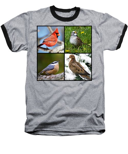 Baseball T-Shirt featuring the photograph Four Seasons Birds Square by Christina Rollo