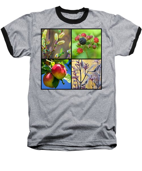 Baseball T-Shirt featuring the photograph Four Seasons Plants Square by Christina Rollo