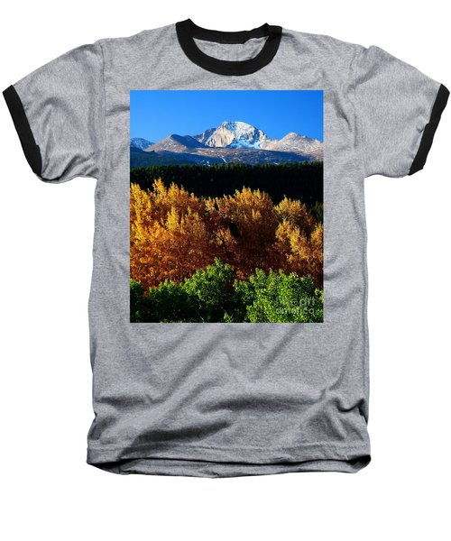 Four Seasons Baseball T-Shirt by Steven Reed