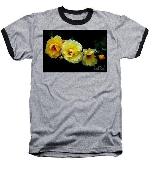 Baseball T-Shirt featuring the photograph Four Stages Of Bloom Of A Yellow Rose by Janette Boyd