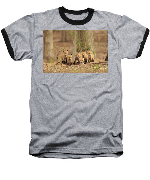 Fox Family Portrait Baseball T-Shirt by Everet Regal