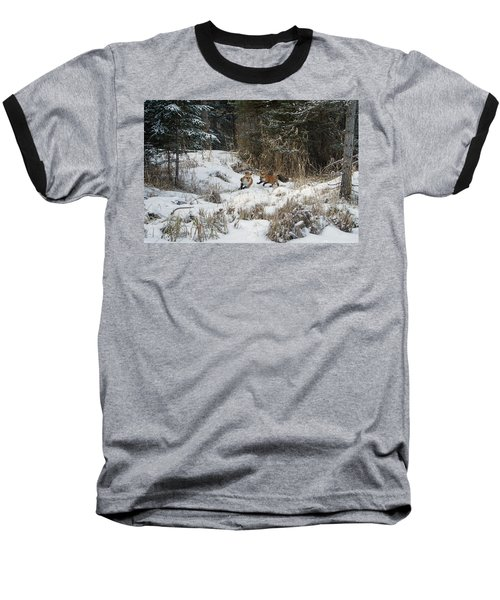 Fox Hollow Baseball T-Shirt