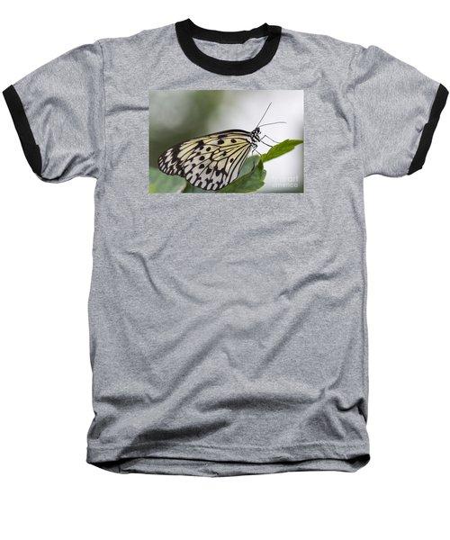 Fragile Beauty Baseball T-Shirt