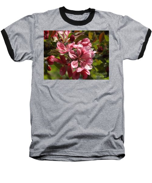 Fragrant Crab Apple Blossoms Baseball T-Shirt by Brenda Brown