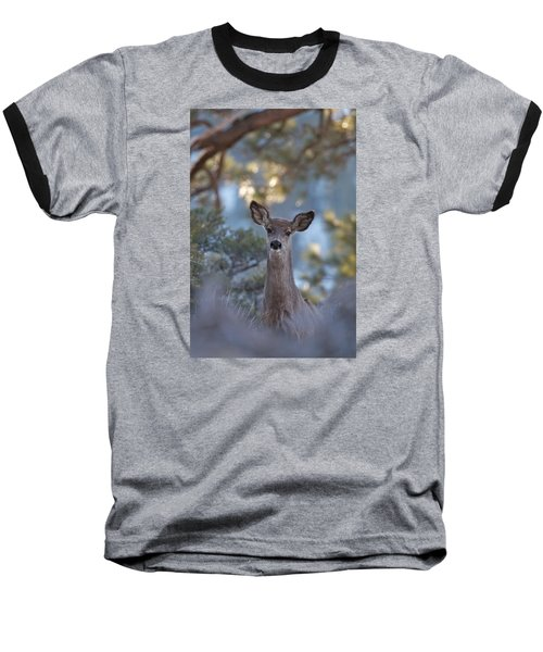 Framed Deer Head And Shoulders Baseball T-Shirt
