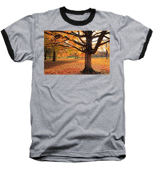 Francis Park Autumn Maple Baseball T-Shirt