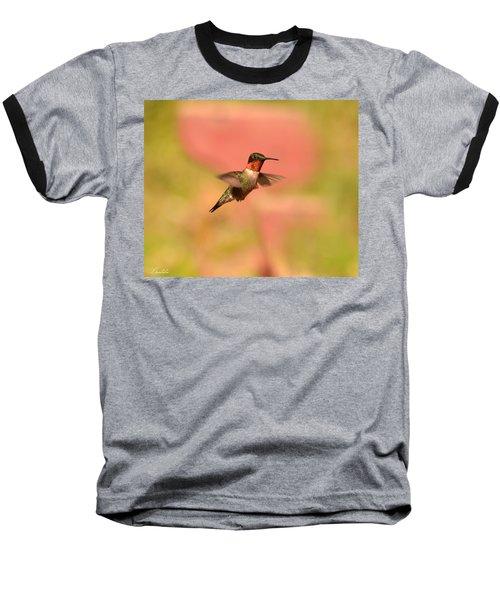Free As A Bird Baseball T-Shirt by Lori Tambakis