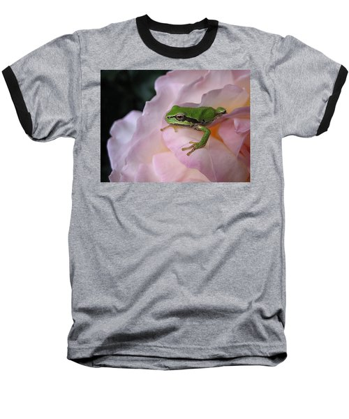 Frog And Rose Photo 3 Baseball T-Shirt