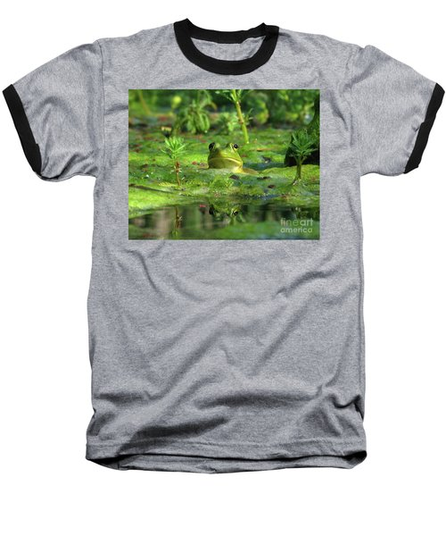 Frog Baseball T-Shirt by Douglas Stucky