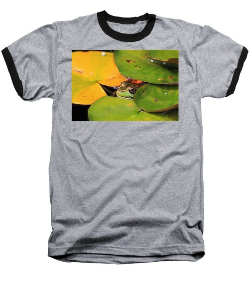 Frog Pond 3 Baseball T-Shirt