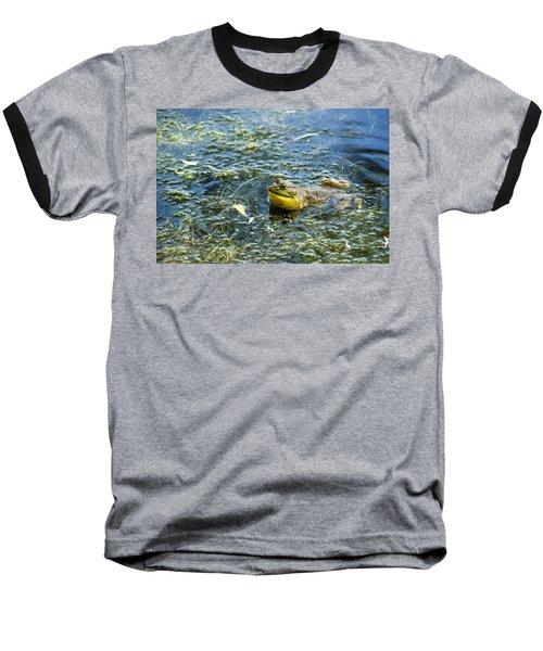 Frog Song Baseball T-Shirt