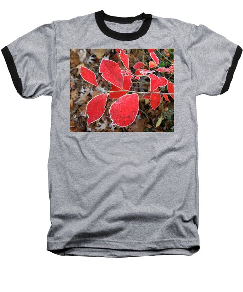 Frosted Blueberry Leaves Baseball T-Shirt