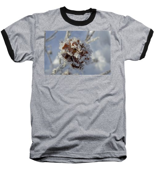 Frosted Willow Rose Baseball T-Shirt by Cathy Mahnke
