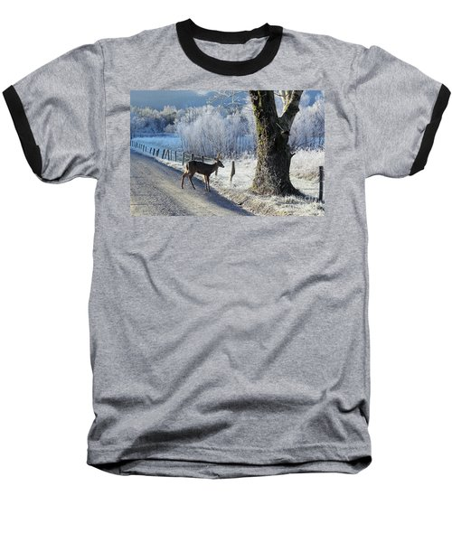 Frosty Cades Cove II Baseball T-Shirt by Douglas Stucky