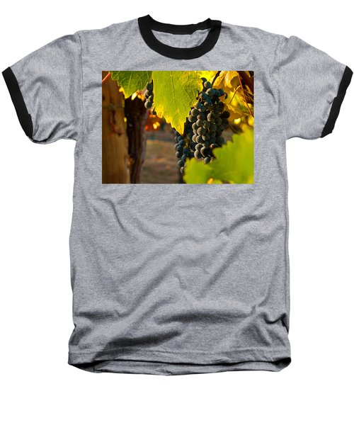 Fruit Of The Vine Baseball T-Shirt by Bill Gallagher